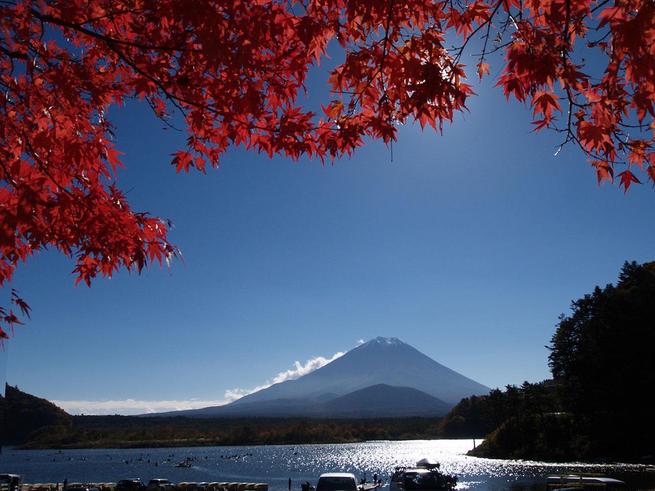 E-300と富士山と・・・_b0021375_18342578.jpg