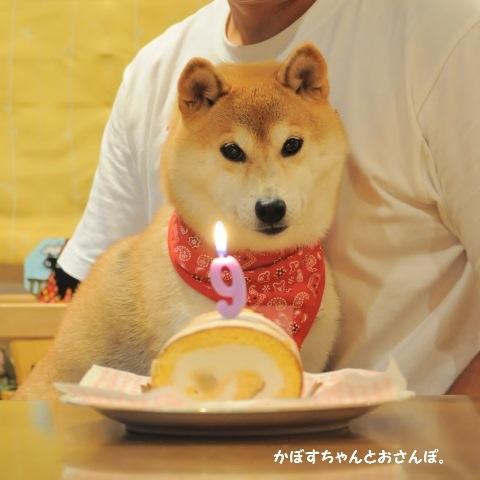 Happy birthday! _a0126590_22140723.jpg