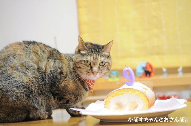 Happy birthday! _a0126590_22143935.jpg