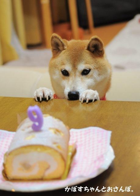 Happy birthday! _a0126590_22151014.jpg