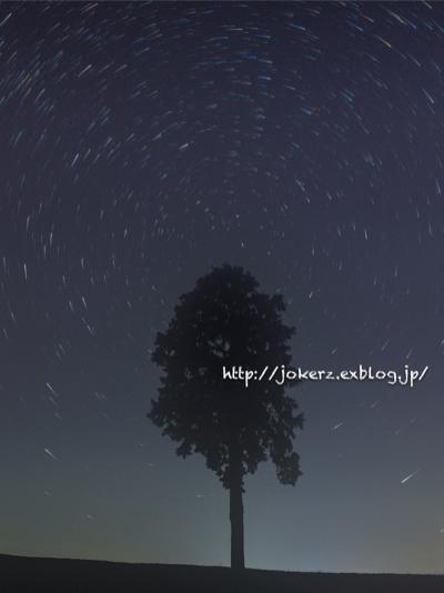 a0157091_1950810.jpg