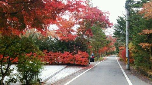 軽井沢ニューアートミュージアムに行きました。_e0119092_11184364.jpg