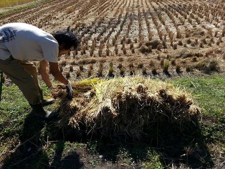 kotangライブ@修平さん家 収穫祭やー_c0226146_1434232.jpg