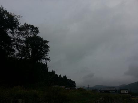 山なんやへ・・・_c0226146_1513263.jpg
