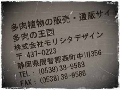 e0264374_14241937.jpg