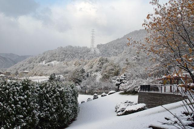雪景色_d0162994_12373272.jpg