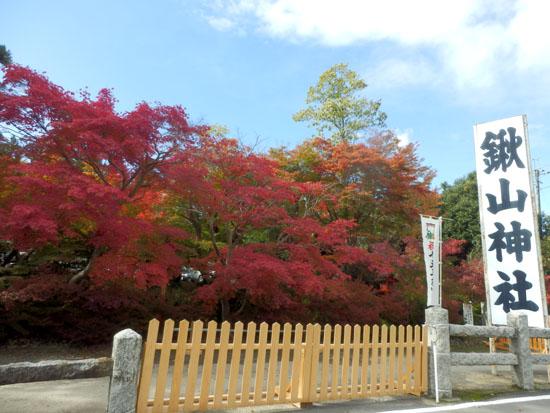 鍬山神社 もう見ごろ_e0048413_18192881.jpg
