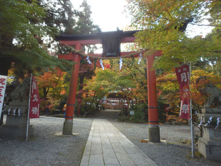 鍬山神社 もう見ごろ_e0048413_18195760.jpg