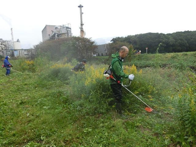 雨の中「ヒガンバナの植付け」に備えた滝川の土手普請準備作業_f0141310_7301556.jpg