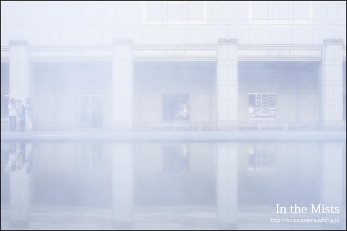 霧の中_f0100215_21354212.jpg