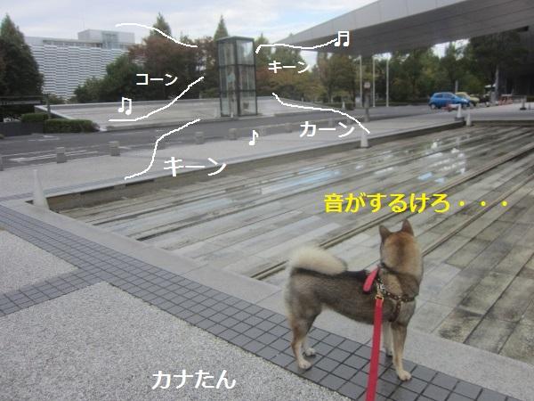 f0143123_10463727.jpg