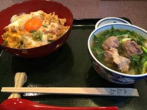 京都へ遠足 Parte 2 アートアクアリウム_a0059035_19441344.jpg