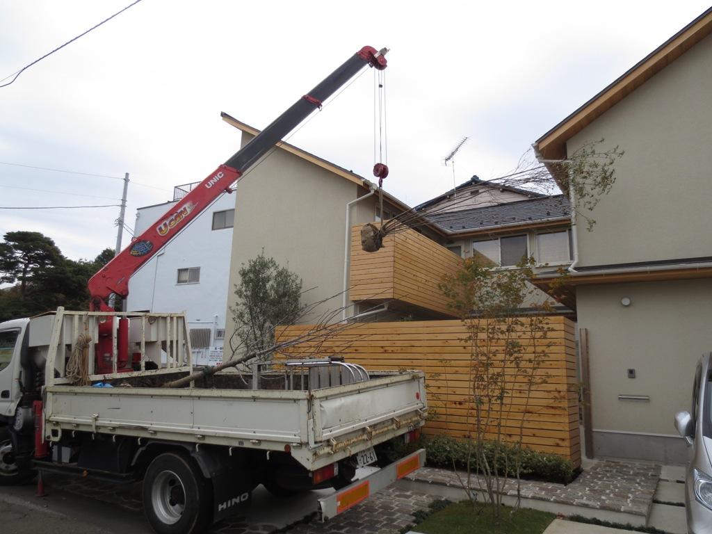 朝霞の家 樹木植え替え_c0310571_10540200.jpg
