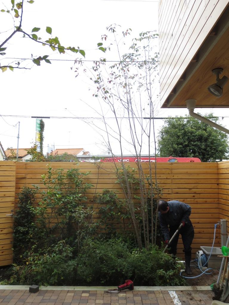 朝霞の家 樹木植え替え_c0310571_10543635.jpg