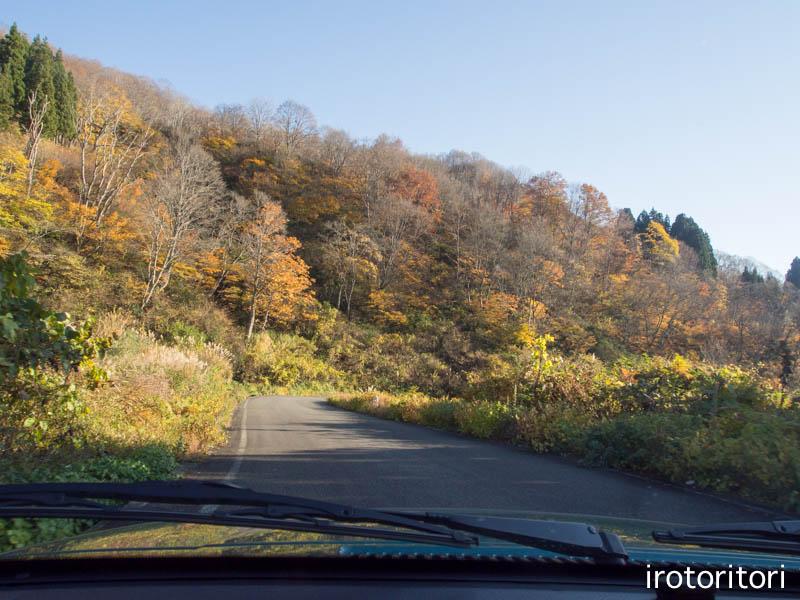ドライブ  (ノスリ)  2014/11/05_d0146592_23361089.jpg