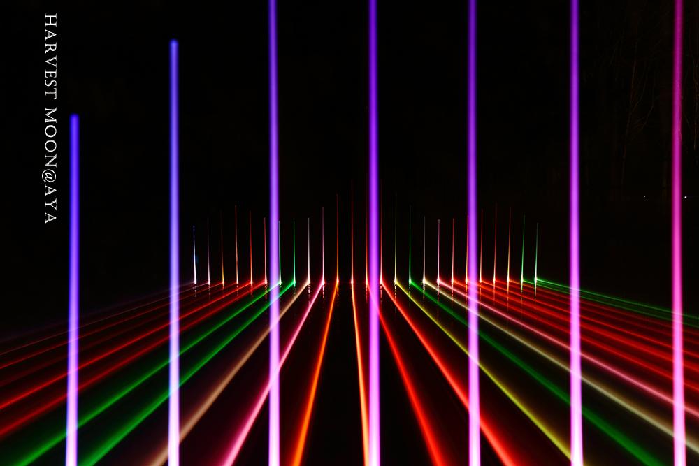 光りの向こう側_b0208495_23503269.jpg