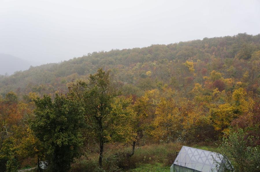 雨のトスカーナです_f0106597_1938493.jpg