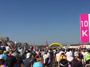 タートルマラソン国際大会 協賛_d0262711_8114868.jpg