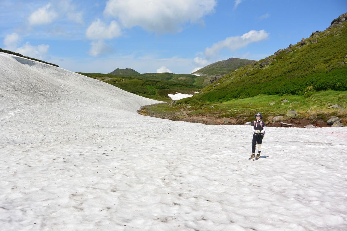 """2014年7月 大雪緑岳から黒岳へ July 2014 \""""Taisetsu Mountains\""""_c0219616_220769.jpg"""