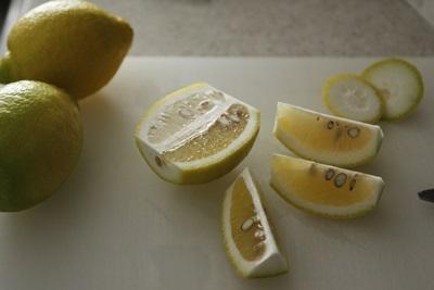 塩レモン、仕込みますっ!_a0165538_09591259.jpg