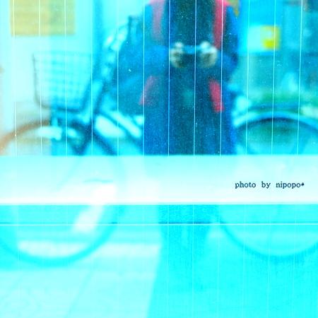 a0284381_952663.jpg