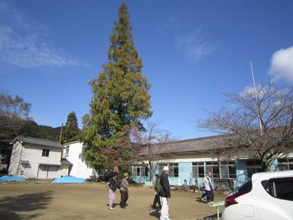 貝塚・浜手地区公民館・シルバーライフ林間学校    by   (ナベサダ)_f0053885_411847.jpg