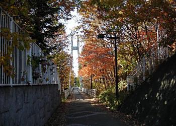 清雲橋と清田南公園_f0078286_9193947.jpg