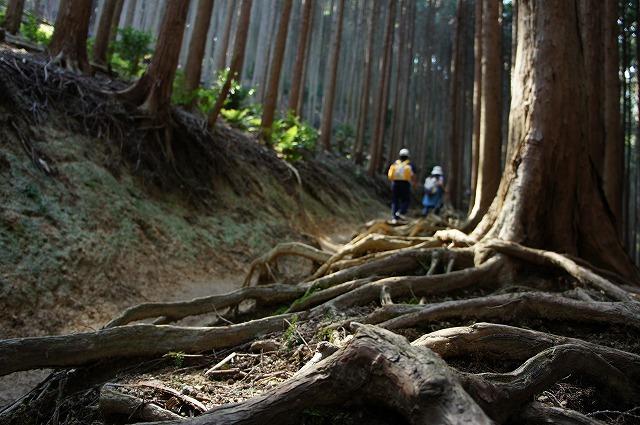【奈良】大和葛城山_c0348200_16160318.jpg