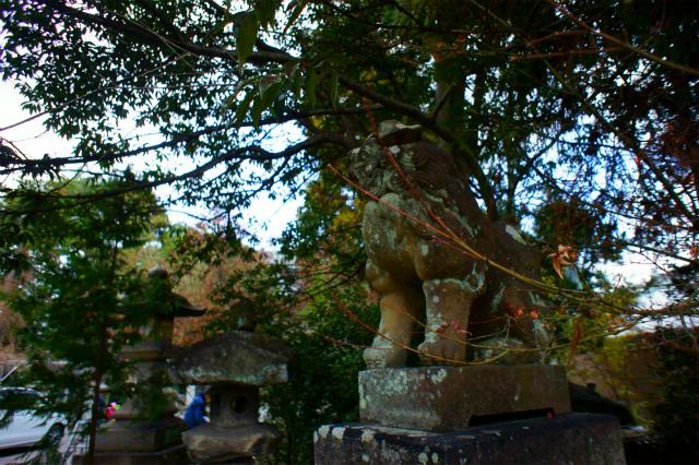 【滋賀】萱野神社_c0348200_16160946.jpg