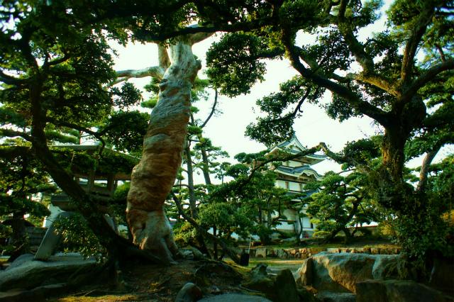 【香川】玉藻公園_c0348200_16162329.jpg