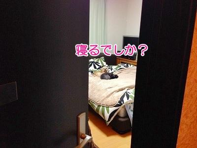 f0326925_23152953.jpg