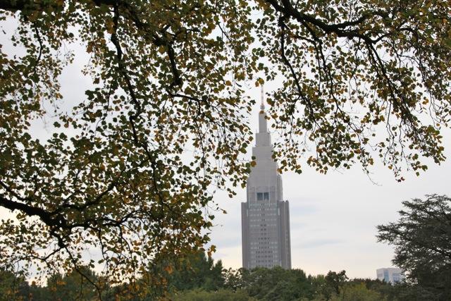 【新宿御苑】カメラ散歩 part 1_f0348831_11235645.jpg