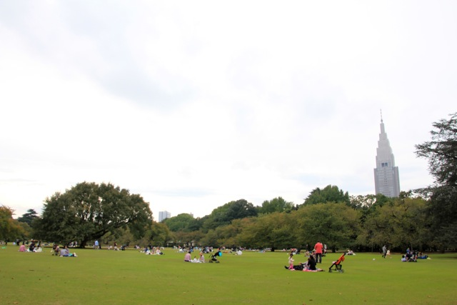 【新宿御苑】カメラ散歩 part 1_f0348831_11240039.jpg