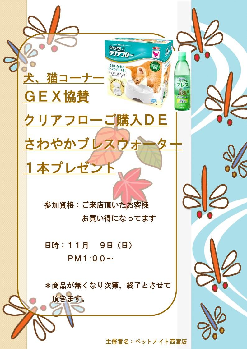 141107 11月8日イベント告知_e0181866_8513259.jpg
