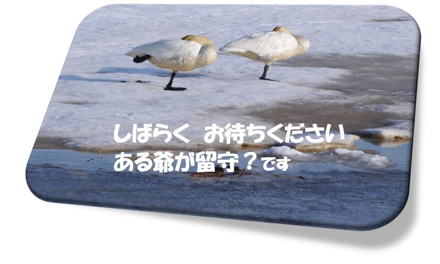 f0126282_23083232.jpg