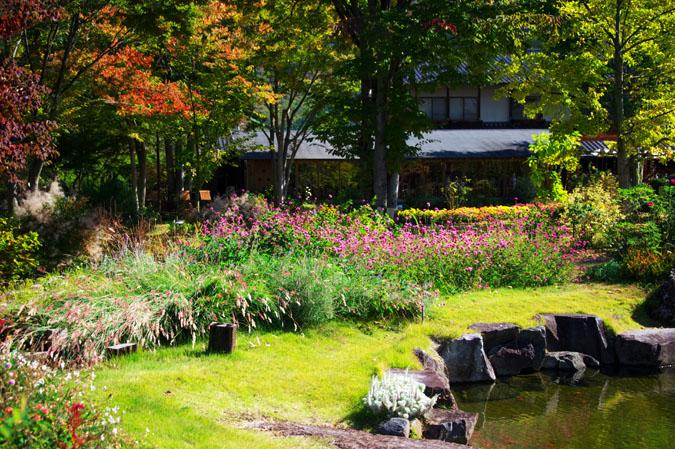 小布施町 「フローラルガーデンおぶせ」の秋の花々1_a0263109_20402488.jpg