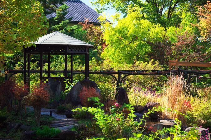 小布施町 「フローラルガーデンおぶせ」の秋の花々1_a0263109_20403757.jpg