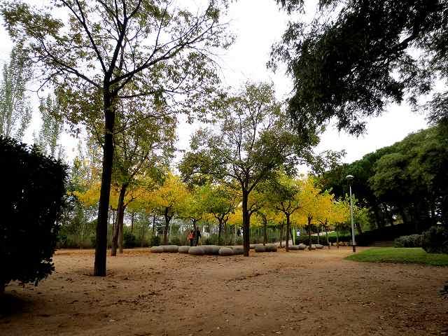 セルバンテス公園の黄_b0064411_05245924.jpg