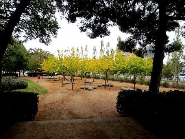 セルバンテス公園の黄_b0064411_05245995.jpg