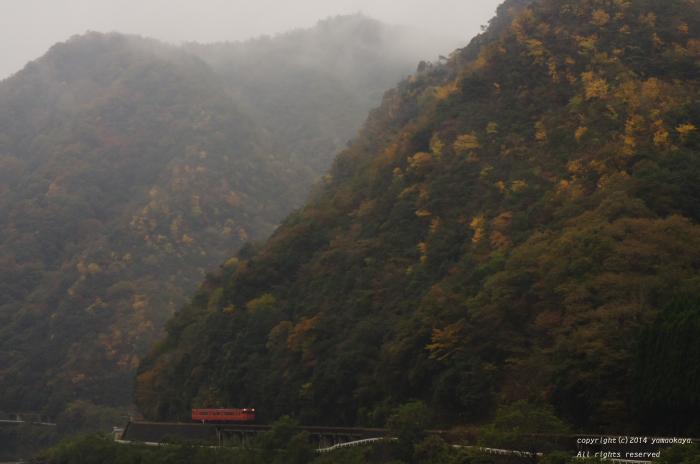 黄葉の季節に ~三江線に朱色キハが帰ってきた日_d0309612_23363661.jpg