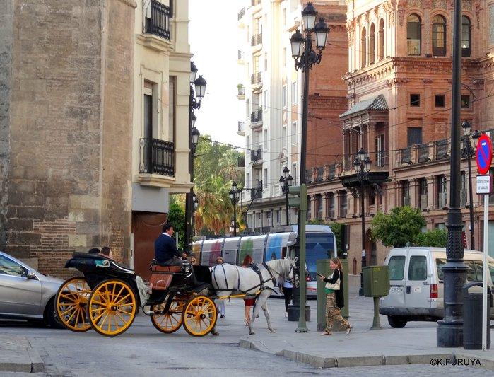 スペイン旅行記 14 セビーリャ (Sevilla)_a0092659_22101481.jpg