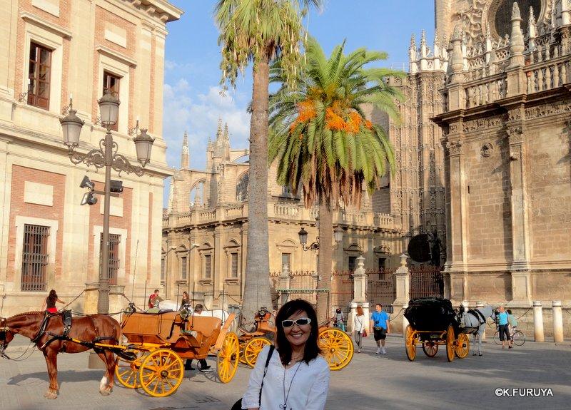 スペイン旅行記 14 セビーリャ (Sevilla)_a0092659_22182353.jpg