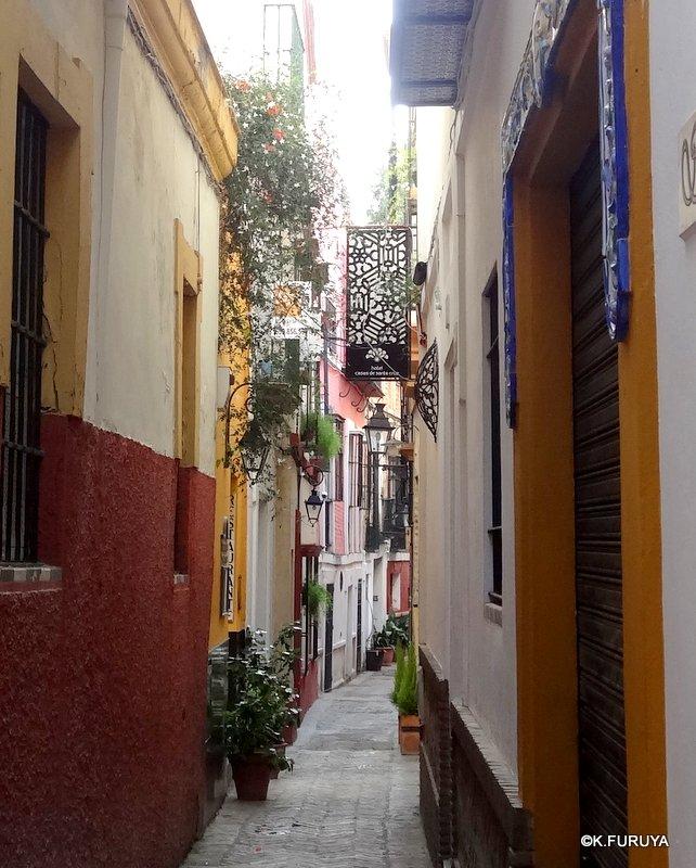 スペイン旅行記 14 セビーリャ (Sevilla)_a0092659_22303796.jpg