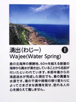 伊江島の地質観察会_c0180460_22521954.jpg