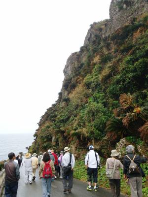 伊江島の地質観察会_c0180460_225327100.jpg
