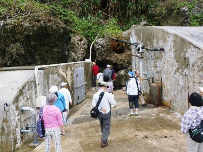 伊江島の地質観察会_c0180460_22542424.jpg