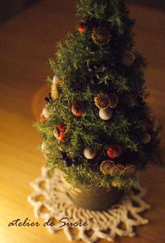 ミニクリスマスツリー@ナイトフォト_b0065587_18494322.jpg