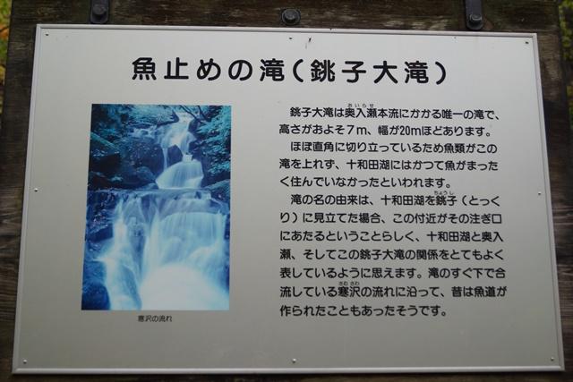 藤田八束秋の写真集_d0181492_17101973.jpg