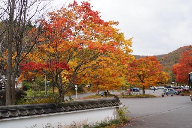 藤田八束秋の写真集_d0181492_17265512.jpg