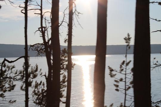 家族旅行2014年08月-北米-イエローストーン・グランドティトン-第五日目-イエローストーン・ノーリスガイザー/マッドボルケーノ_c0153302_18451548.jpg